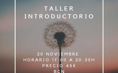 Taller introductorio al Método Hakomi